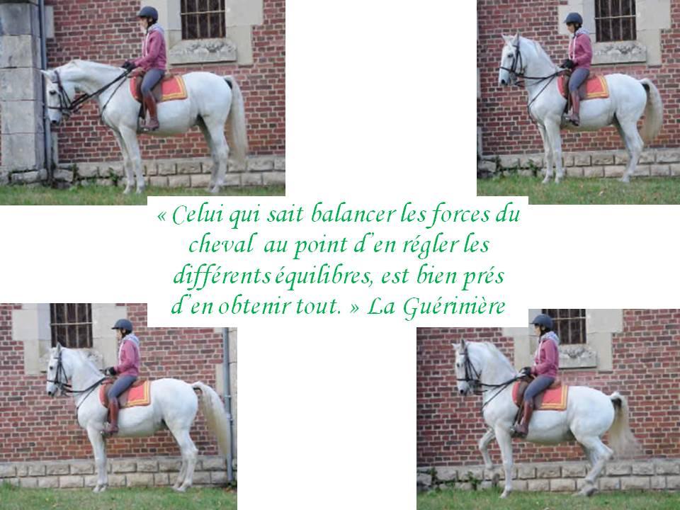 Celui qui sait balancer les forces du cheval au point d'en régler les différents équilibres est bien près d'en obtenir tout. La guérinière